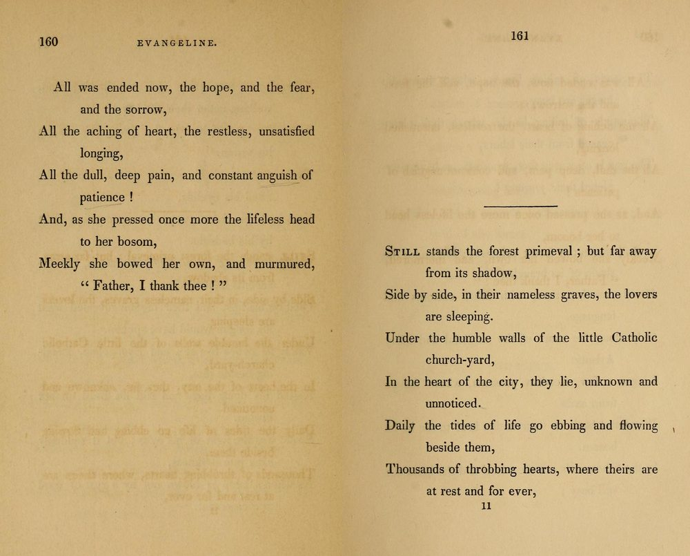 What is the mood in Henry Wadsworth Longfellow's poem